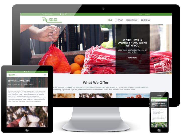 Cady Bag Corporate Website - Animink